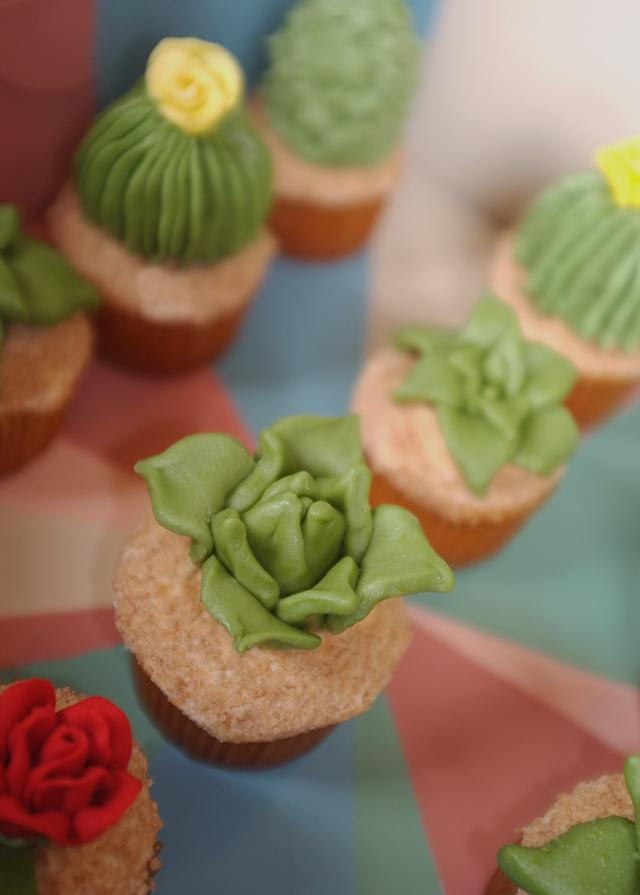 Succulent-Cupcake