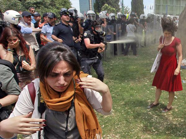 Ceyda Sungar, Gezi Parkı protest Lady in Red, 2015