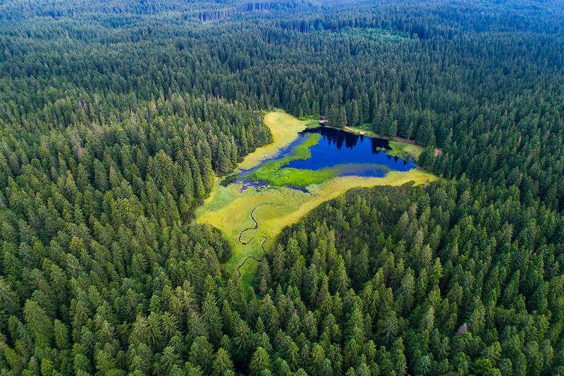 Crno jezero / Mariborsko Pohorje